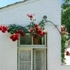 huis-broeckmeulen-de-kersenboom-04