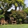 huis-broeckmeulen-tuin-11